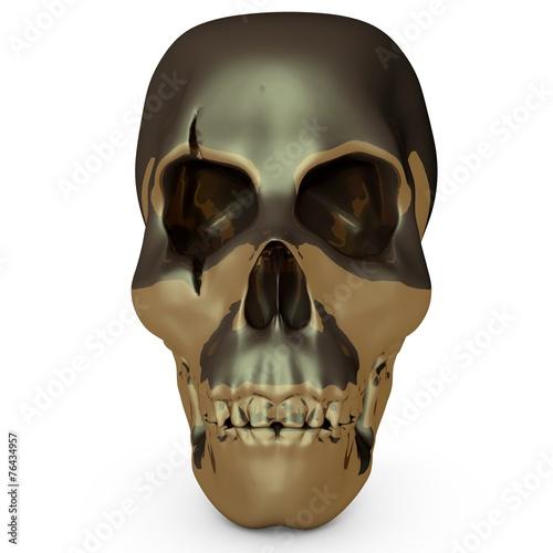 canvas print picture Skull001