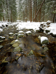 Nice mountain river in winter forest