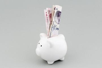 Sparschwein 5 und 10 Türkische Lira