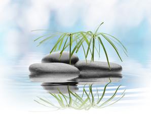 stones isolated white background