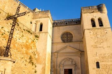 Collégiale Saint-Sauveur de Grignan, Drôme