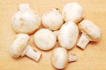 Some true mushroom on wooden board background