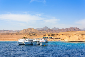 Luxury yachts in the Red Sea