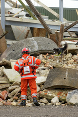 USAR fire fighter and suarch dog at building collapse