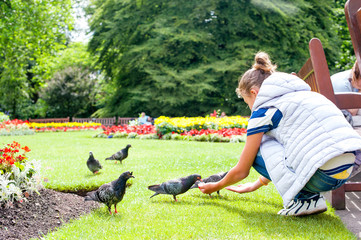 Young girl feeding pigeons in the green summer park.