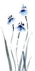 Cute floral background. Chinese watercolor irises