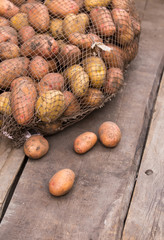 Fresh harvested potatoes with soil still on skin