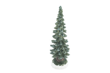 Fir-tree souvenir