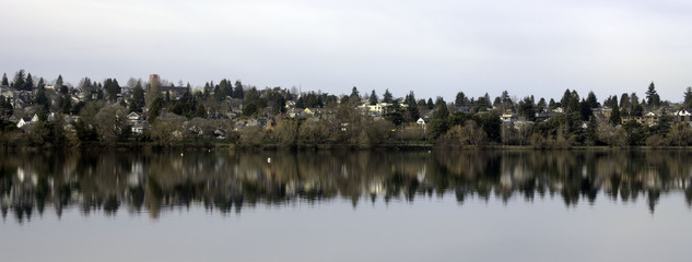 Reflections on Green Lake