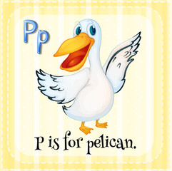 A letter P for pelican