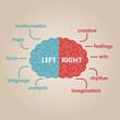 Left & right human brain illustration - 76465380