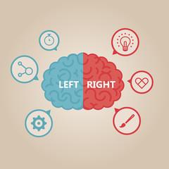 Left & right human brain illustration