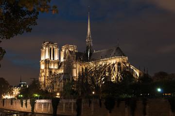 Notre Dame autumn night illuminated