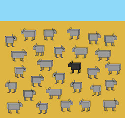 Business concept. Black sheep