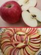 Tarte aux pommes - Recette ancienne