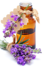 Bottle with lavender oil isolated on white background