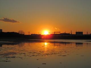 谷津干潟の夕陽