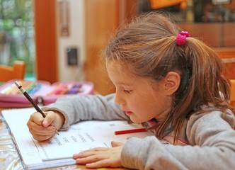 little girl writes the homework on notebook