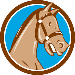 Horse Head Bridle Circle Cartoon