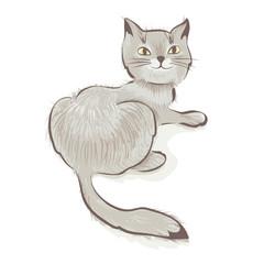 Cute gray smiling cat. Vector illustration.