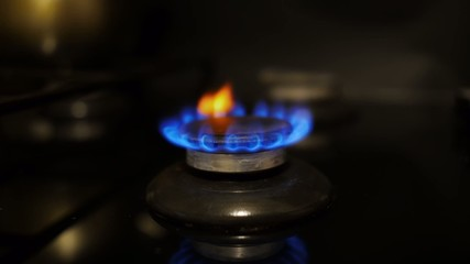 Flame of a gas stove.