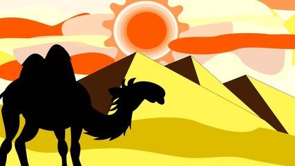 Silhouette of a camel going through the desert near the pyramids