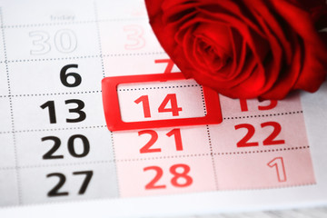 red rose lays on the calendar with the date
