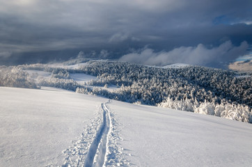 Winter  mountain landscape with lonely ski run