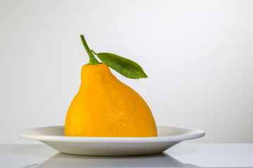 lemon on a white plate
