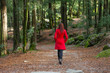 Young woman walking away alone on a forest path - 76484160