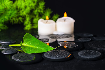spa concept of green leaf Calla lily, foliage and candles on zen