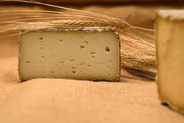 tomme de savoie,fromage,gastronomie