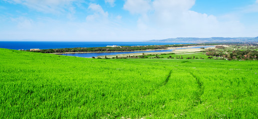 green field by the coast in Sardinia
