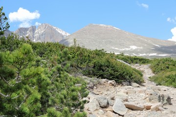 Colorado trail to Longs Peak. United States nature.