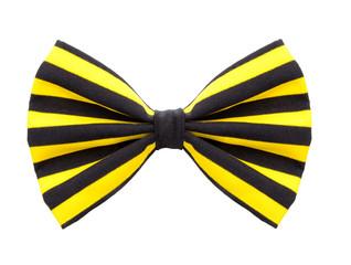 Gelbe Clownfliege