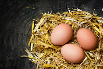 eggs in a nest of straw on  dark wooden background, copy space