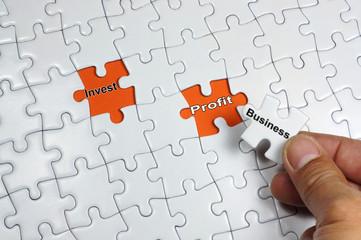 Business Investment Profit
