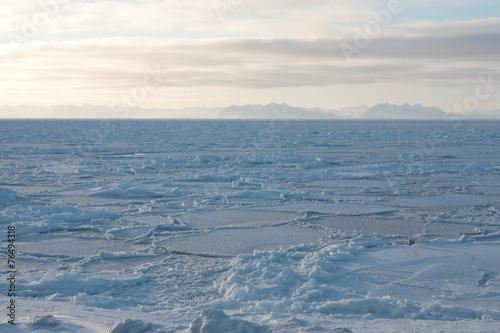 Foto op Plexiglas Antarctica 2 Eisfjord auf Spitzbergen