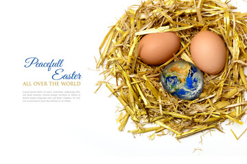 eggs in a nest of  straw, isolated on white background, sample t