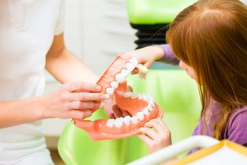 Zahnärztin erklärt Mädchen Zähneputzen
