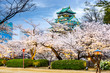 Osaka, Japan at Osaka Castle during the spring season. - 76508303