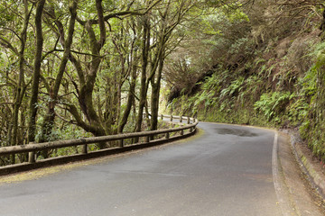 The road on  Tenerife island, Canary islands, Spain