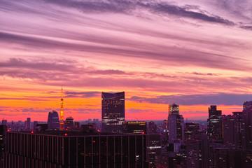 東京中心街の夕景