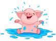 Piggy in a puddle