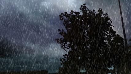 tree in south jeddah and heavy rain