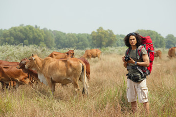 On the field with cows