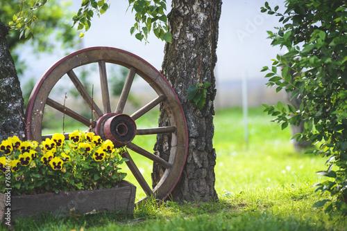 Cart wheel in the garden
