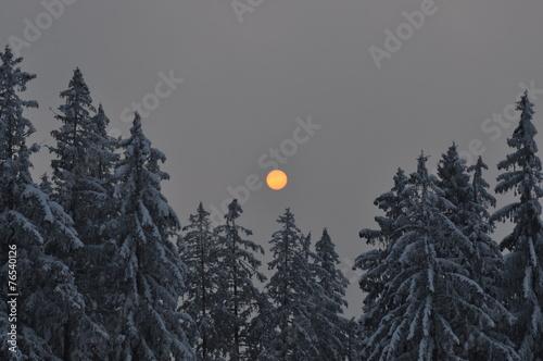 canvas print picture Sonnenuntergang über Winterwald