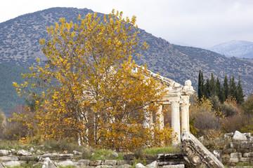 Fall in Aphrodisias