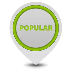 Popular pointer icon on white background